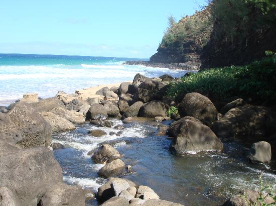 Kalalau Trail: Stream crossing