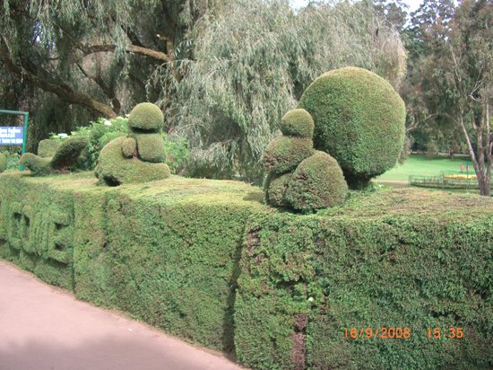 Ooty, Inde : Botanical Garden