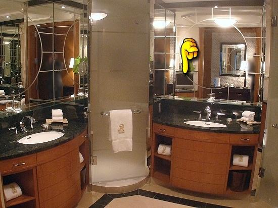 The Ritz-Carlton, Tokyo: The Club Deluxe room - The bathroom with the oddly placed TV