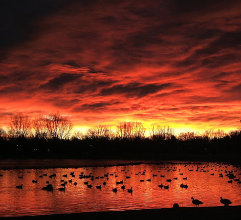 Greeley, CO: Sanborn Park Sunset
