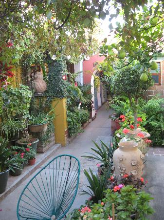 Las Golondrinas: Gardens and walkways