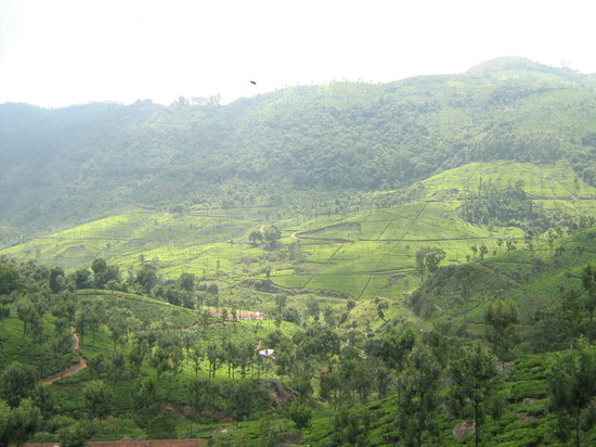 Ooty (Udhagamandalam), India: One of hte wonderful view of the Ooty hill station..