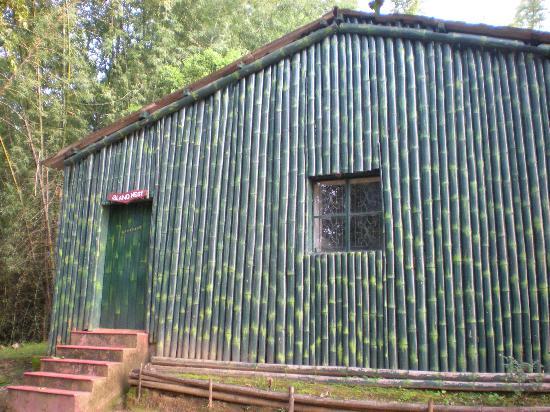 Valparai, India: Bamboo Hut on Island