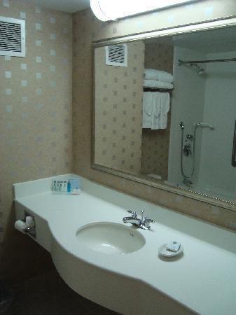 هامبتون إن آند سويتس بوسطن كريستاون سنتر: Bathroom