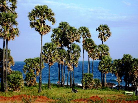 Visakhapatnam, India: Totlakonda , vizag