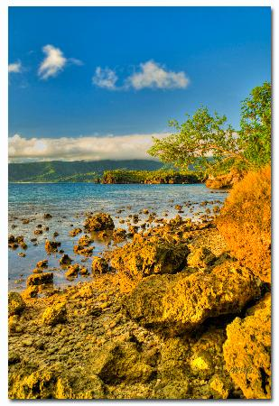 Coral Cove Resort: morning beach scene