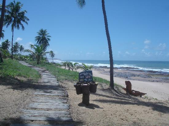 Sauipe Resorts: beach in front of the hotel