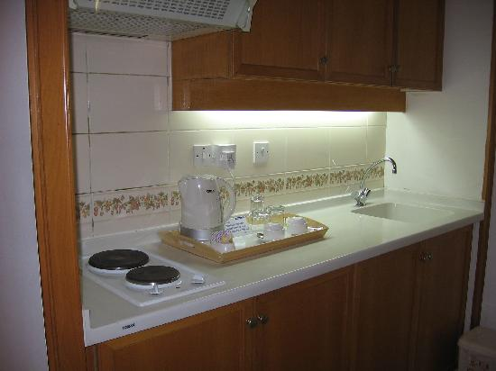 Dolphin Hotel Apartments: hot plate, sink etc.,