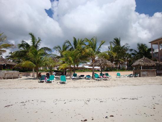 Island Seas Resort Bahamas Reviews