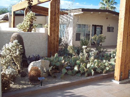 Twentynine Palms, Καλιφόρνια: Oasis Visitor Center