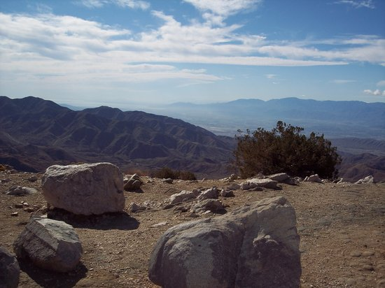 Joshua Tree National Park Resmi