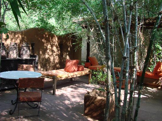 Mahua Kothi: courtyard of my room