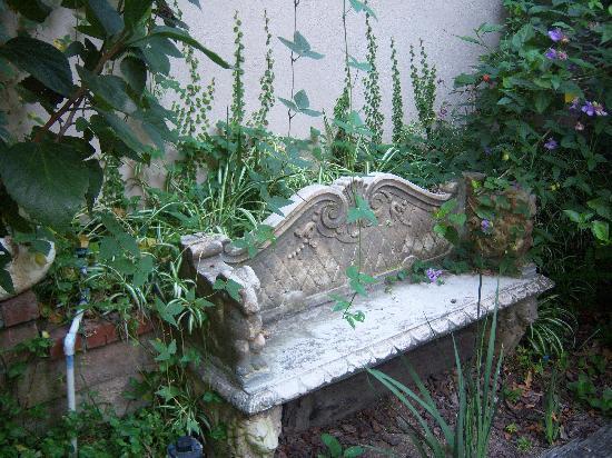 The Secret Garden Bed and Breakfast: Garden