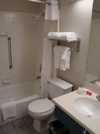 Ramada Marina Del Rey: La salle de bains