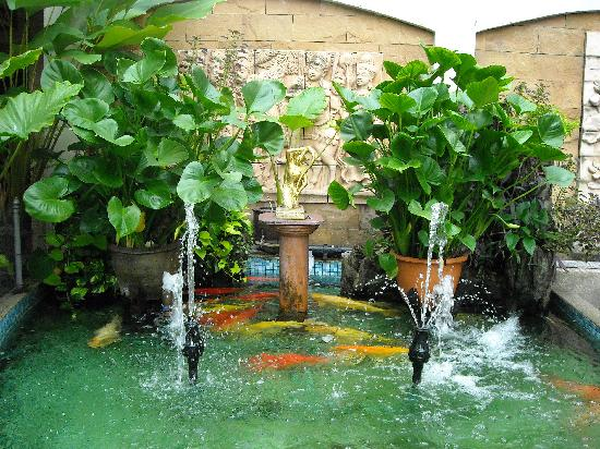 PJ Watergate Hotel : PJ's Fish Pond, Outside the Entrance