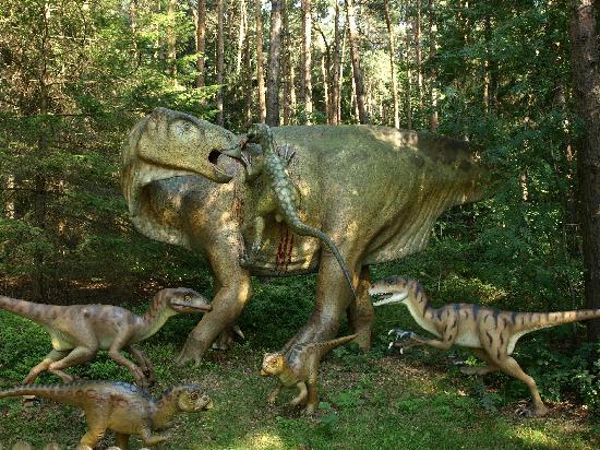 Dino Park Picture Of Dino Park Rehburg Loccum Tripadvisor