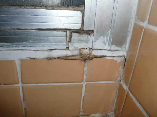 Chambres de Pech Mortier: douche