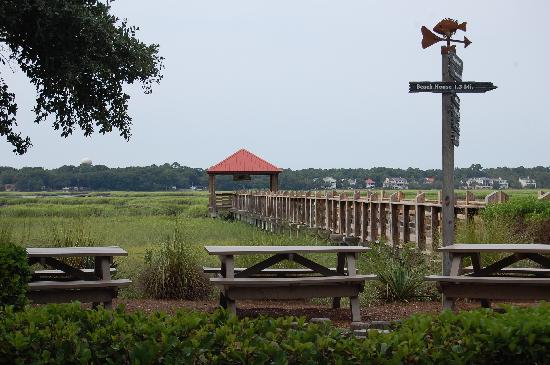 Disney's Hilton Head Island Resort: photo of pier, picnic area next to pool and shuffleboard court (not pictured)