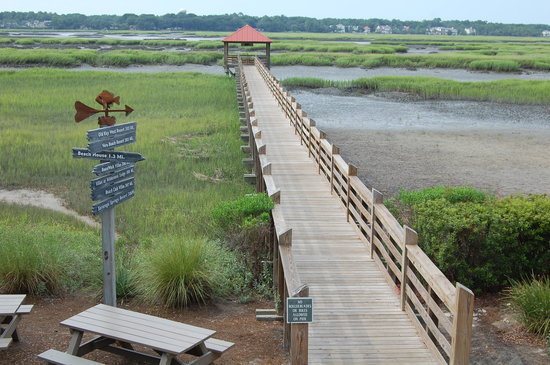 Disney's Hilton Head Island Resort: Another view of pier/marsh from snack bar