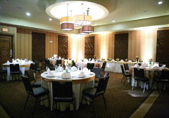Holiday Inn Hotel & Suites McKinney - Fairview: Ballroom