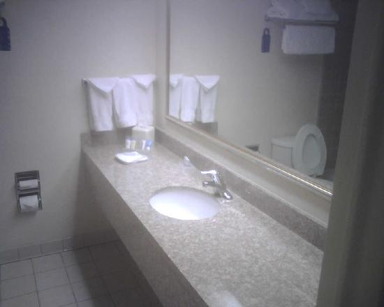 Richmond Airport Hotel: Decent, clean bathrooms