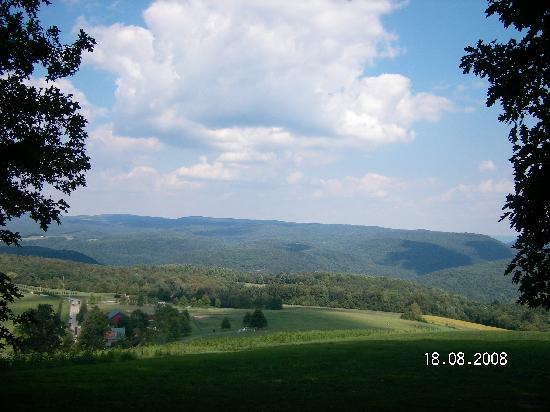 Trenthouse Inn Bed and Breakfast: View from Kentuck Knob