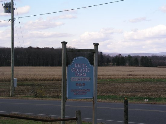 Delta Organic Farm Bed and Breakfast: Entrance to the B&B