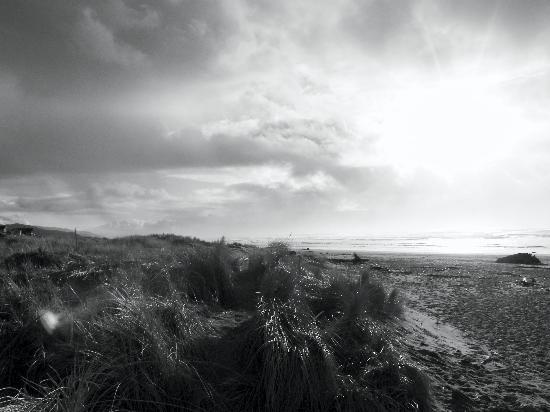 San Dune Inn照片