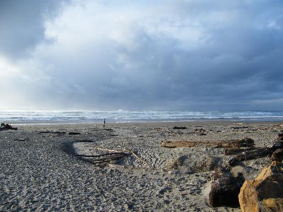 San Dune Inn: manzanita beach