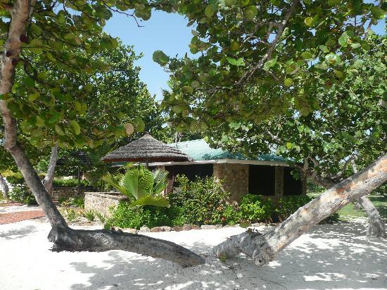 Palm Island Resort & Spa: Beachfront room