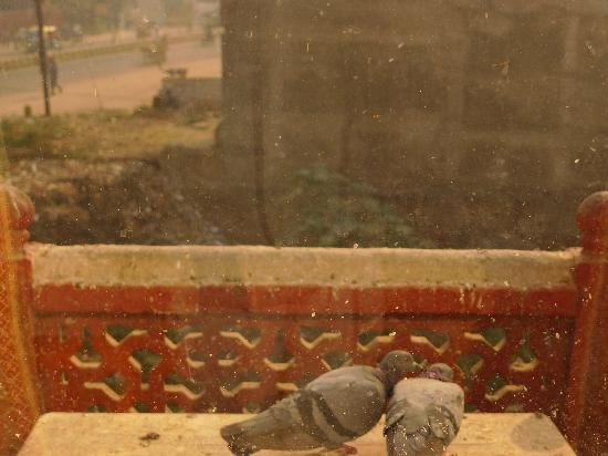 Hotel Kant: La vue sur Fatehabad Road, éloquent de notre état d'esprit...