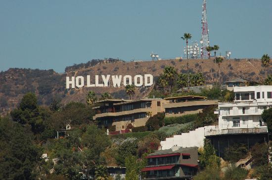 Super 8 Hollywood/LA Area: hollywood sign from rooftop