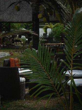 La Maison D'ete Hotel: jardin