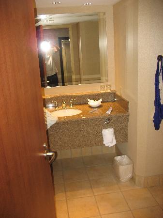 Isle Casino Hotel Waterloo: Bathroom