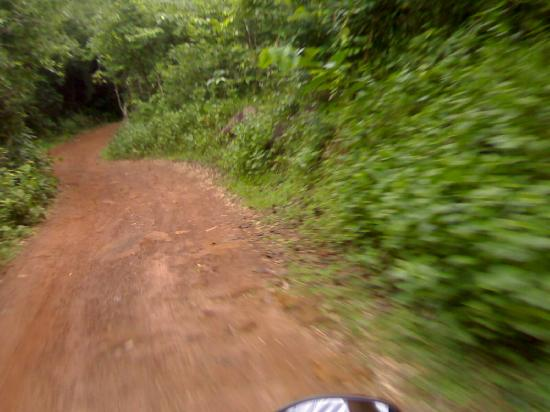 Odisha, India: The road beside the river which leads to dense forest