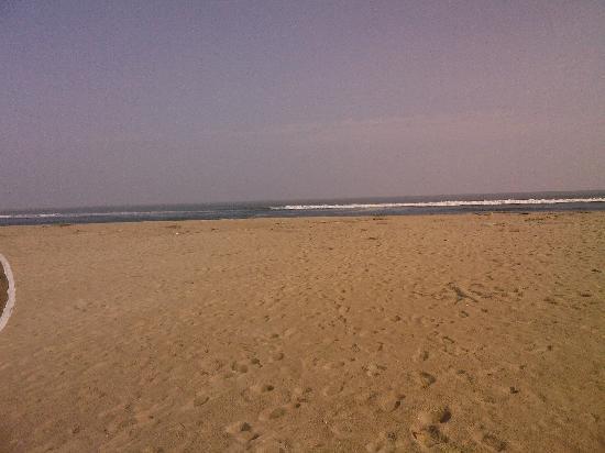 Odisha, India: Virgin beach near the mouth of sea
