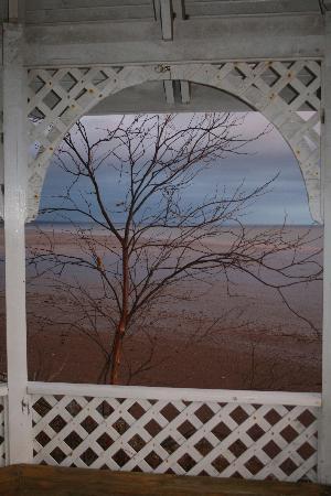 Four Seasons Retreat: View from the Gazebo