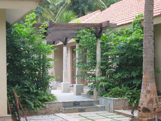 Shreyas Yoga Retreat: Verdant green spaces!