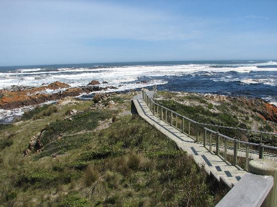Arthur River Beach House: The spectacular Southern Ocean