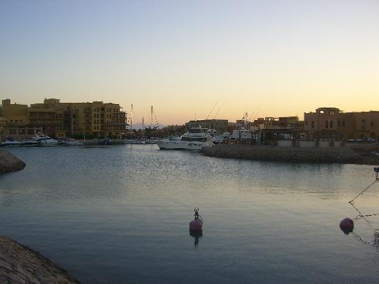 Turtle's Inn: Marina
