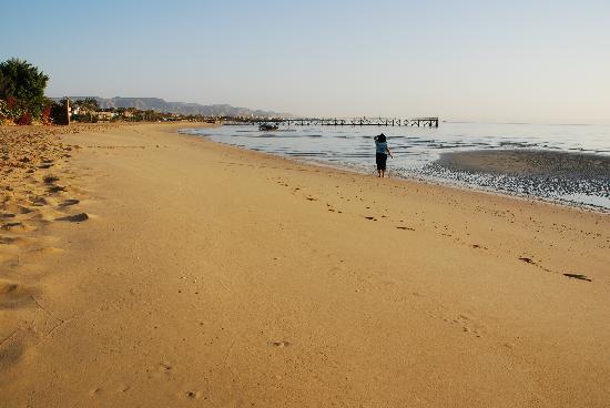 Palmera Beach Resort: Strand
