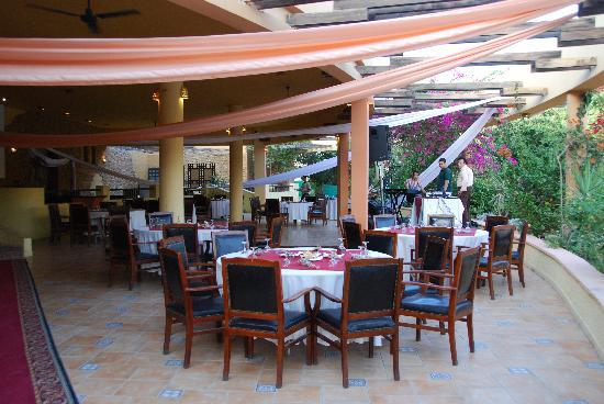 Palmera Beach Resort: Bar