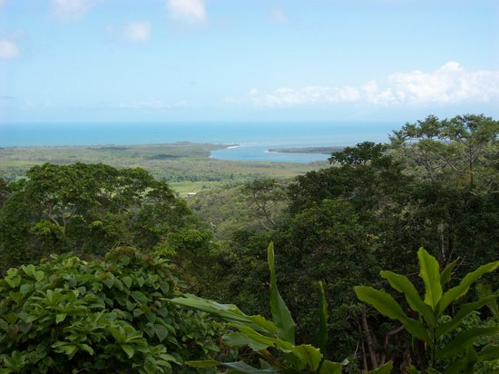Daintree Rainforest: Lookout at the start of the Daintree