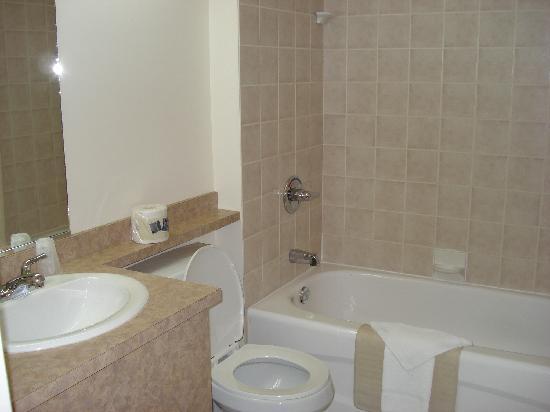 Econo Lodge Boischatel : Badezimmer
