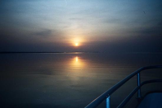Штат Амазонас: Vistas del Amazonas