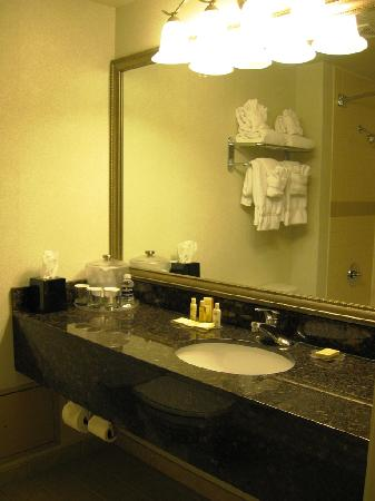 DoubleTree by Hilton Pleasant Prairie Kenosha: Bathroom vanity at Radisson Kenosha