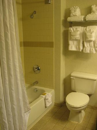 DoubleTree by Hilton Pleasant Prairie Kenosha: Shower in executive suite at Radisson Kenosha