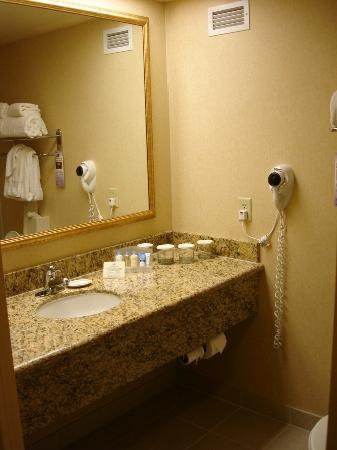 Bathroom Counters Picture of DoubleTree by Hilton Hotel Santa