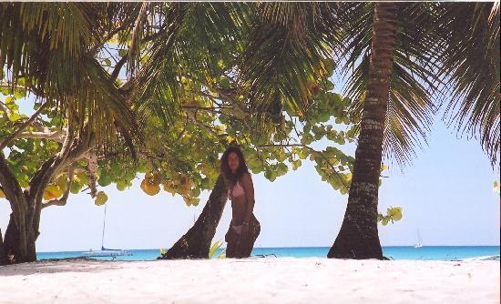 Veraclub Coco Bavaro: Isla Saona Santo Domingo