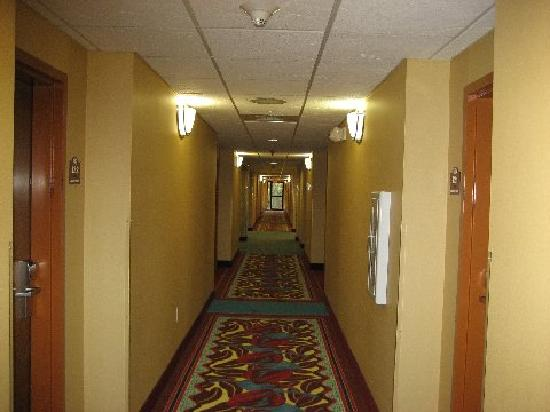 Bay Inn & Suites: hallway (all rooms interior)